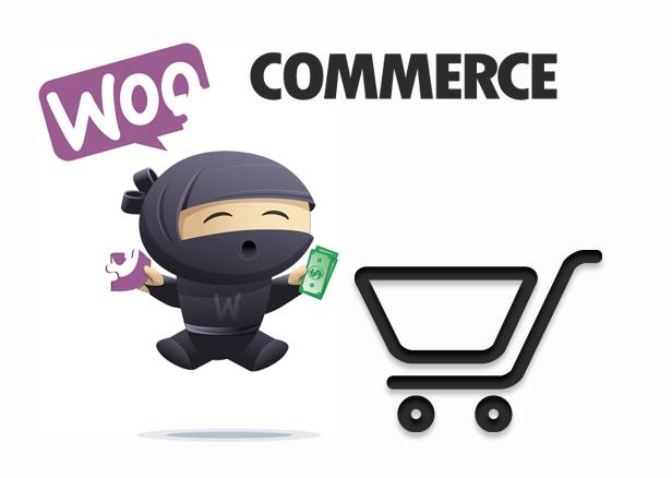 https://www.novalnet-solutions.com/wp-content/uploads/2021/02/woo-commerce-shopping-cart-plugin.png
